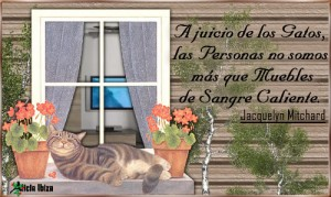 136-Frases-Animales