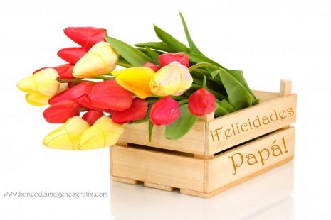feliz-dia-del-padre-2012-felicidades-papa-caja-madera-tulipanes