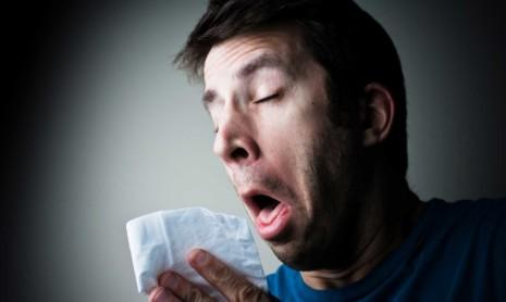 1462183576-estornudo