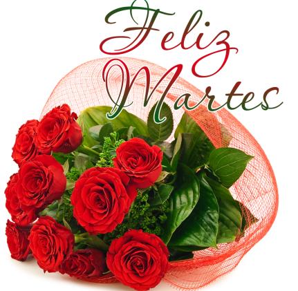 martes-rosas-rojas-4