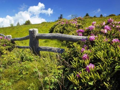 imágenes-bonitas-de-paisajes-con-un-cielo-hermoso-