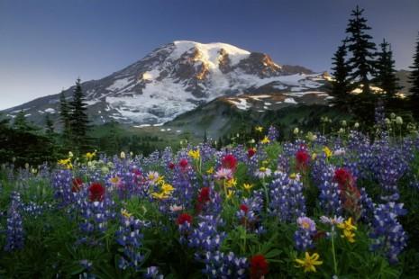 paisajes en la montaña.jpg2