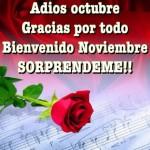 imagenes de otoño con frases Adiós Octubre, bienvenido Noviembre!!!