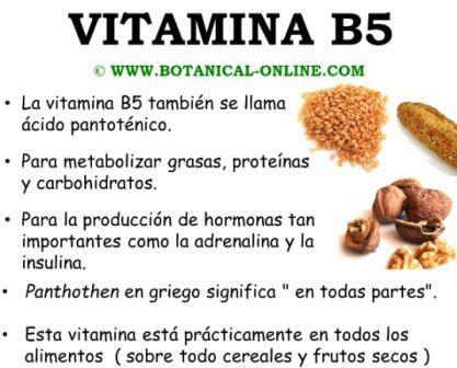 vitaminasinfo.jpg1