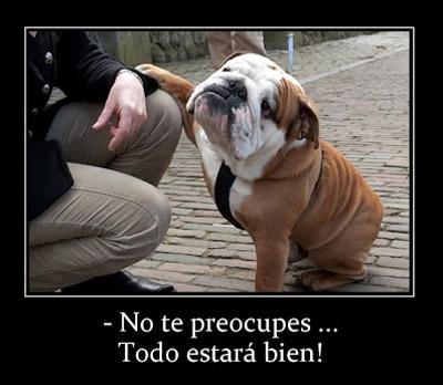 Frases Graciosas Con Animales Para El 29 De Abril Día Del