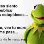"""Mensajes divertidos de la Rana René: El """"a veces"""" de la Rana René y después se me pasa"""