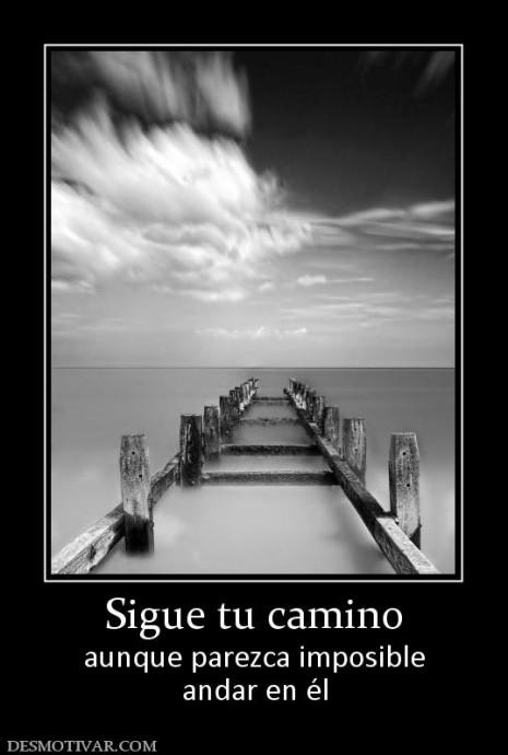 sigue_tu_camino
