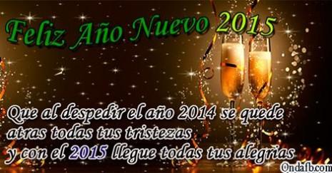 adios2014.jpg2