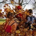 Hermoasa imágenes de otoño para descargar y compartir