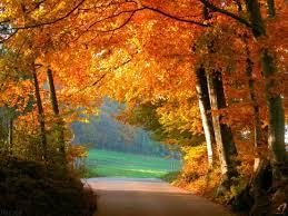 otoño.jpg2