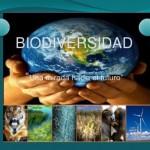 Día Internacional de la Biodiversidad en imágenes para descargar gratis