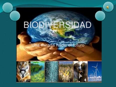 biodiversidad-1-728 (1)