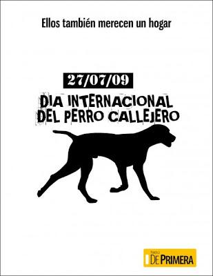 perro-callejero.jpg9