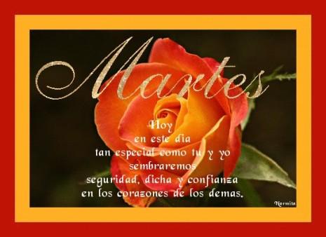 imágenes y Frases de Feliz Dia Martes  (3)