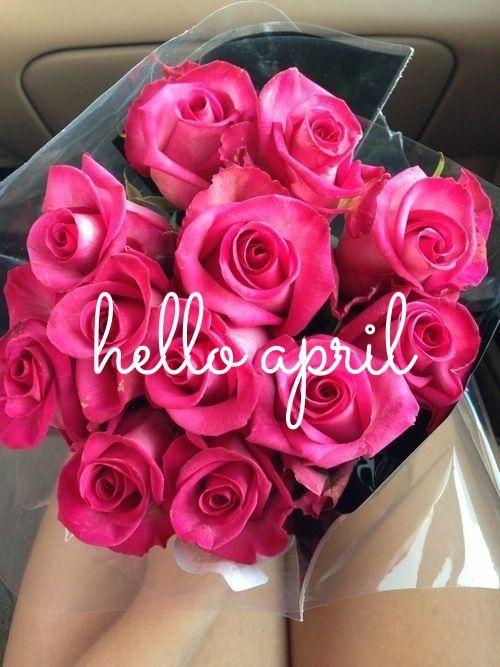 164210-Roses-Hello-April
