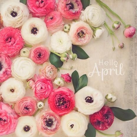Dawn Regan-LadyByTheBay-April