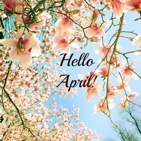 Hello_April_Photo