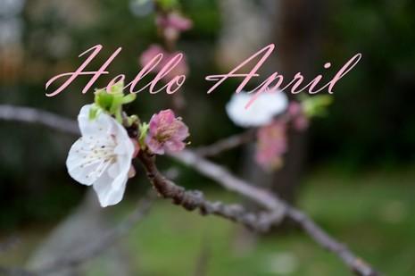 dream-april-art-beautiful-Favim.com-776695