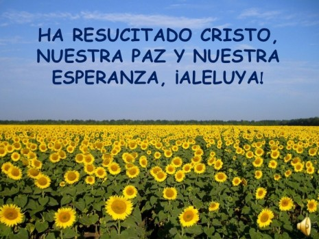felices-pascuas-2012-1-728
