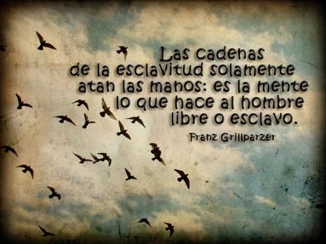 CrandoOpinionLibertad_DeCaminoPorLaVida
