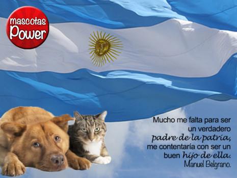 1405_frase-blanca-perros-gatos_mascotaspower_belgrano-dia-de-la-bandera