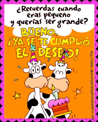 30 Frases De Feliz Cumpleaños Bonitas Con Imágenes Lindas