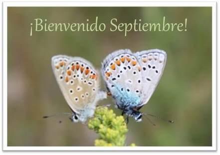 septiembre (1)