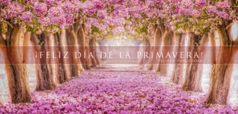 Bonitas Imágenes Con Frases De Bienvenida Primavera