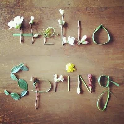 bienvenida-primavera-l-ifvmss