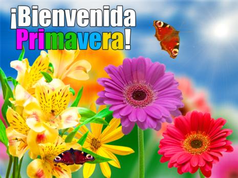 bienvenida-primavera-flores-con-mensaje-21-de-marzo-5