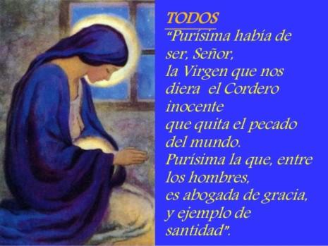 solemnidad-de-la-inmaculada-concepcin-de-maria-ciclo-b-dia-8-de-diciembre-del-2014-23-638