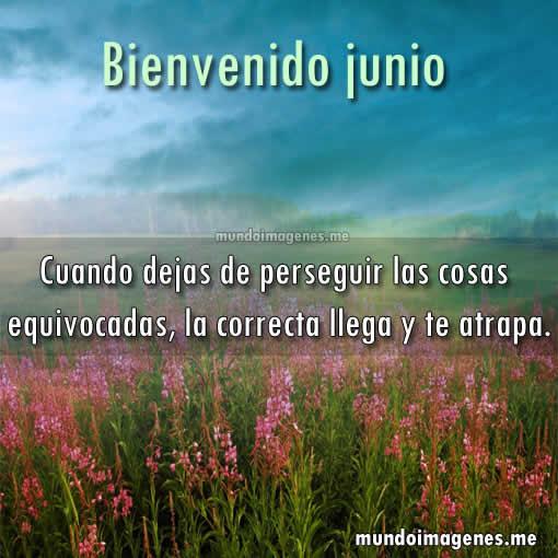 Frases Para Junio Bienvenido Junio Hola Junio Imágenes Y