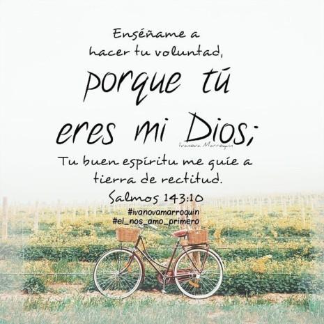 Imágenes Frases Biblicas Sobre La Fé El Amor Y La Amistad