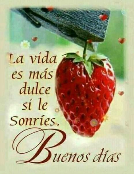 Buenos Dias Buenas Tardes Y Buenas Noches Amor Frases