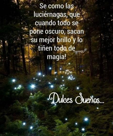 Buenos Dias Buenas Tardes Y Buenas Noches Amor Frases Imagenes