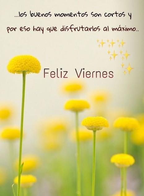 Feliz Viernes Bonitas Imágenes Frases Gifs Y Tarjetas